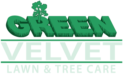 Green Velvet Lawn & Tree Care Ltd.